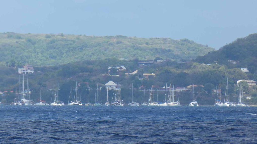 Arrivée en Martinique - les confinés de Saint Anne