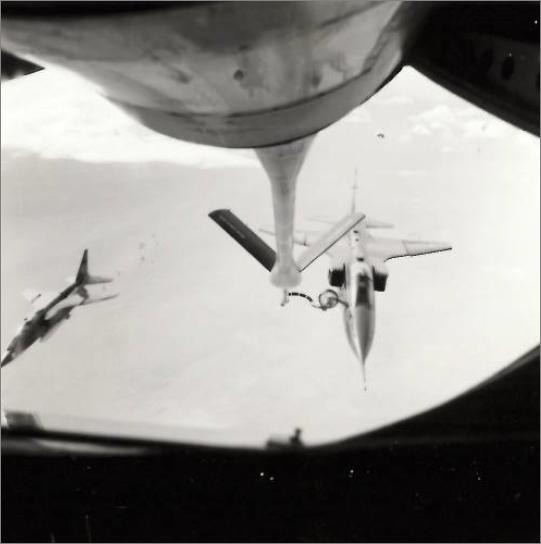 Opération Lamantin, par le général Michel Forget.