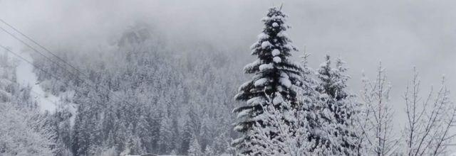 Jour de brume en montagne