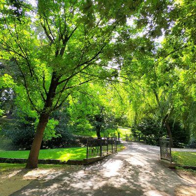 Lundi Soleil : Vert (4)