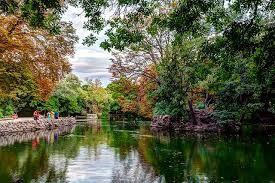 Imágenes del parque Campo Grande de Valladolid.- El Muni