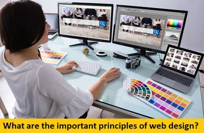 What are the Important Principles of Web Design?