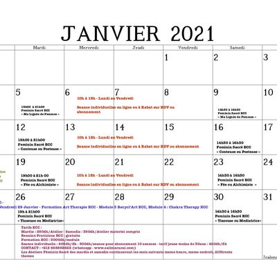 Programme ECC Janvier 2021