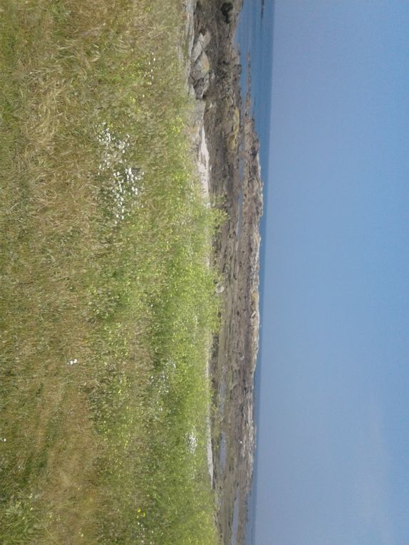 Sortie annuelle  au Croisic (12 km)