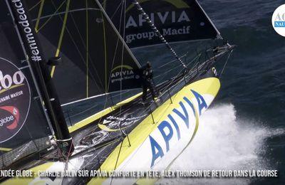 Vendée Globe - Dalin et Ruyant, 360 milles devant Le Cam, Thomson de retour !