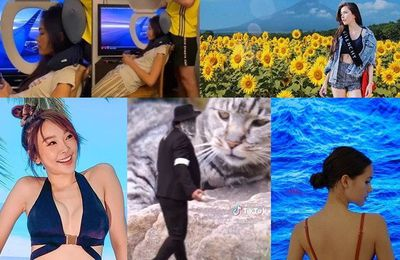 A collection of funny pictures calling for smiles when celebrities want to travel during the Covid-19 period.