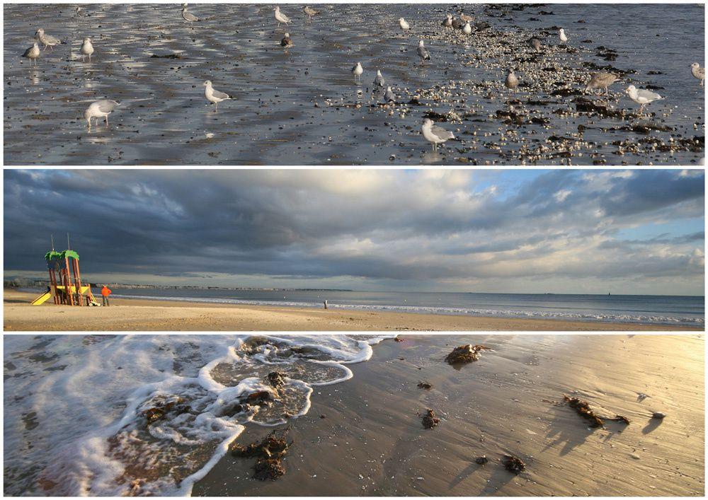 La  plage de La Baule en photos - Thierry Weber Photographe de Mer