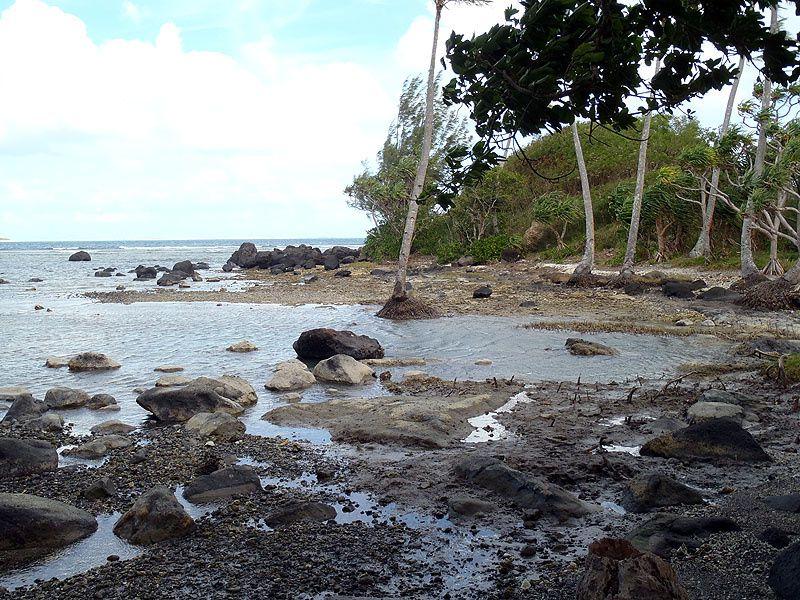 Photos et images de notre séjour au Vanuatu.