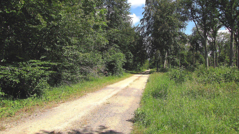 carrefour_Route de Briançon_Route du Goulvent