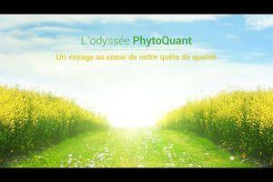 PhytoQuant, l'énergie par les plantes!