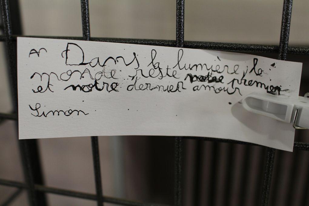 """Productions artistiques des citations de Camus - Projet """"Camus, l'écrivain"""" en CE2 (8 ans)"""