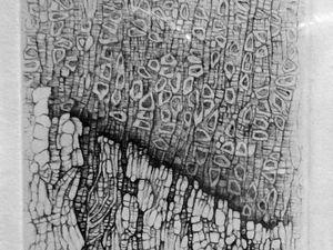 L'exil des roches - 1999