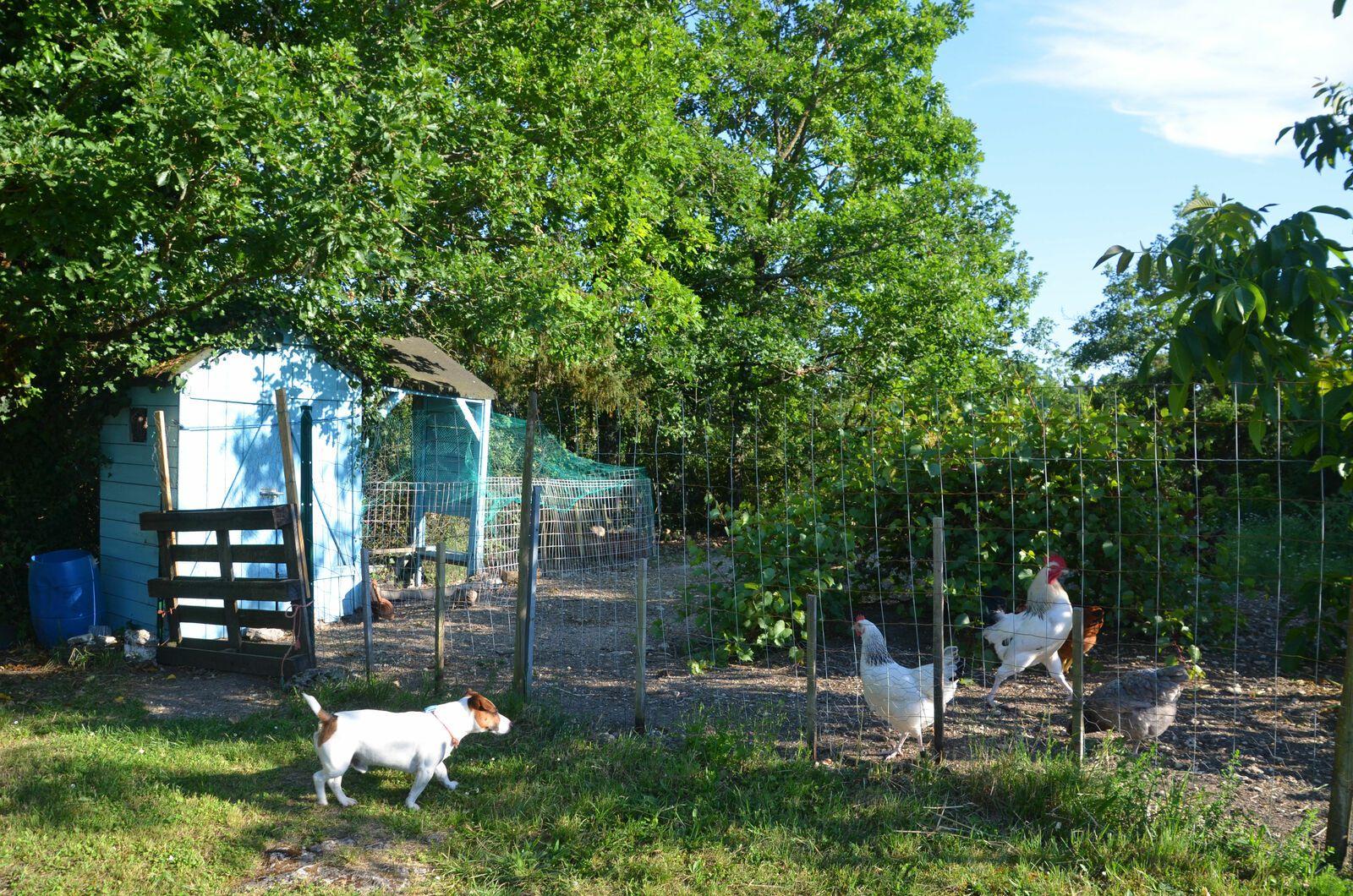 Atelier & jardin - juin