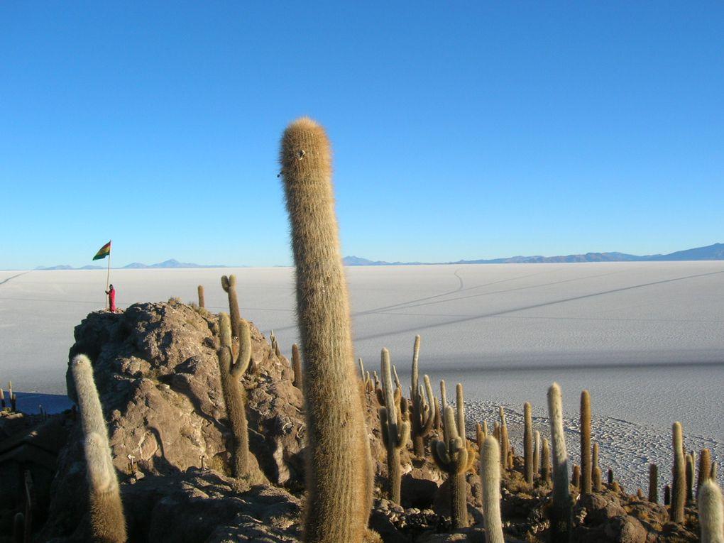 Album - Bolivie-le sud Lipez