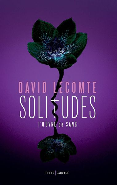 Chronique de Solitudes de David Lecomte
