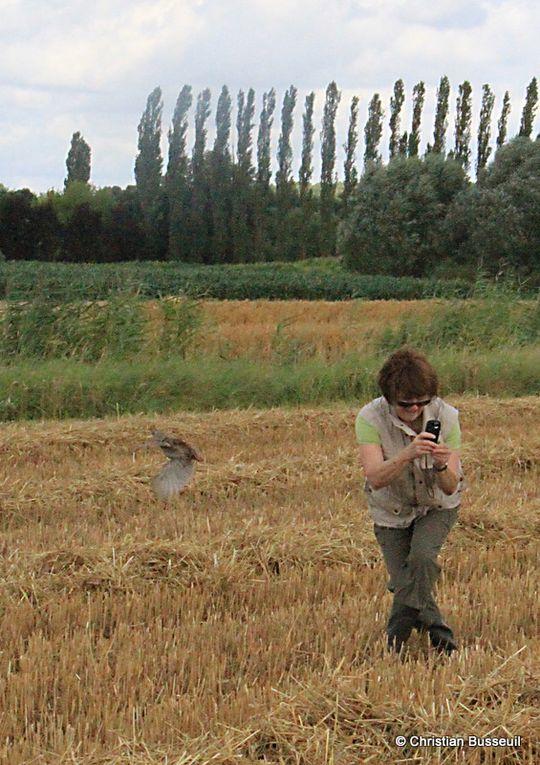 2012 - Photos-de-Christian-BUSSEUIL-du-28-29-08-2012