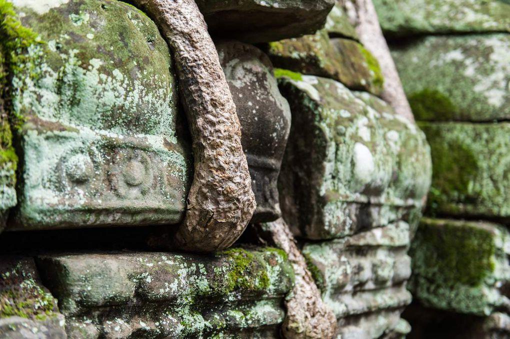 Angkor Wat, Ta Prohm, Bayon, des sites aux ambiances bien différentes...