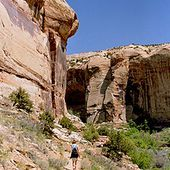 Monument national de Grand Staircase-Escalante - Wikipédia