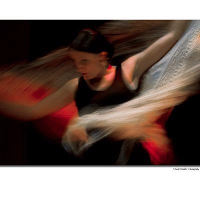 """exposition photographique """" L'ART en VITRINE"""""""