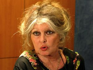 Scandale Brigitte BARDOT : Didier ROBERT porte plainte ! [communiqué de presse]