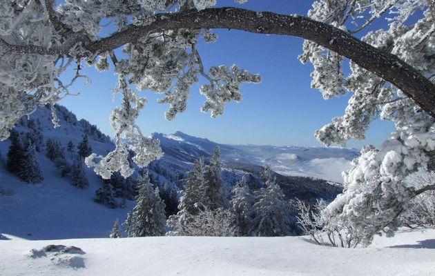 Le Vercors se prépare à l'arrivée de la neige