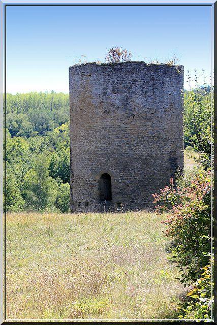 Diaporama château Saint-Romain-de-Surieu