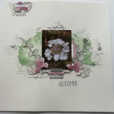 Une petite page en Chou and Flowers......