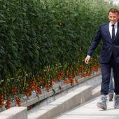 """Georges Kuzmanovic : """"Le principal obstacle à l'indépendance agricole française, c'est M. Macron"""""""