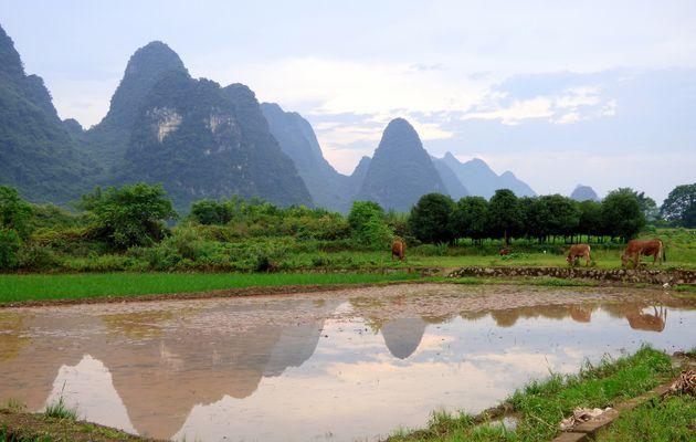 La campagne de Yangshuo 阳朔