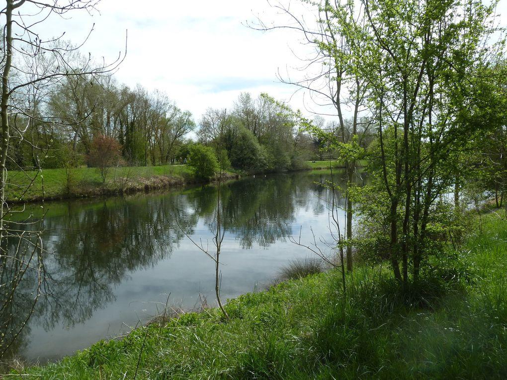 Randonnée de Brétigny-Sur-Orge à Saint-Michel-Sur-Orge, 13,2 km.