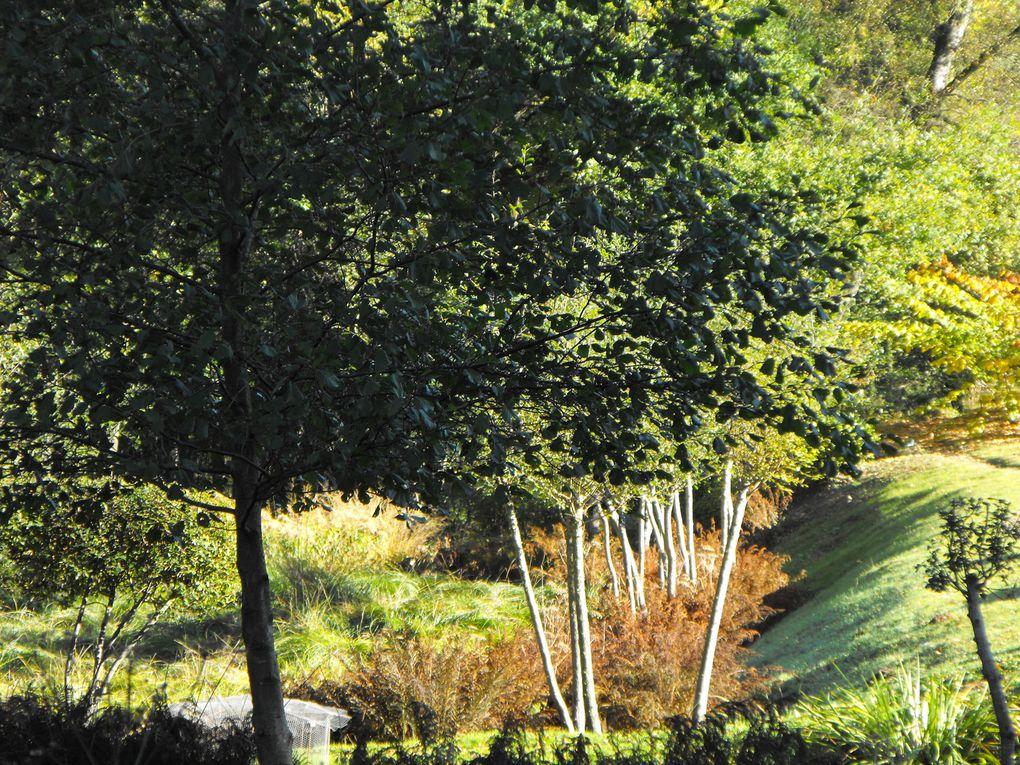 Un paysage jardiné...