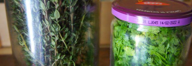 Méthode de conservation des herbes aromatiques