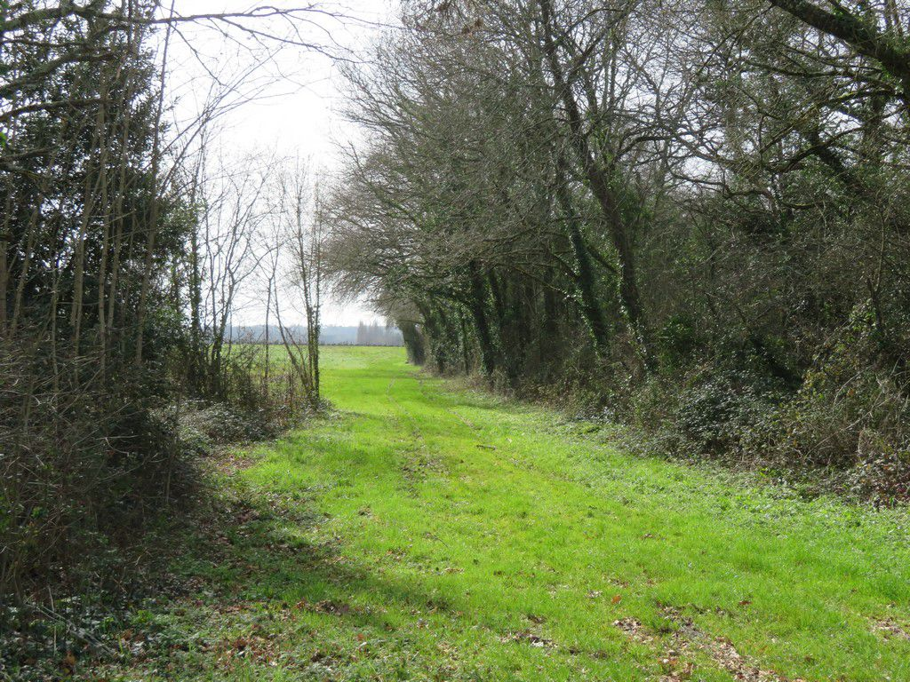"rando cezac ""boucle du collinet"" 16.17 km"
