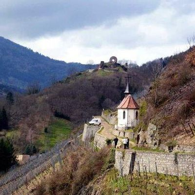 Sortie séniors mercredi 27 octobre la vallée de la Thur.