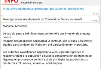 Des news fraiches du Koweït ..