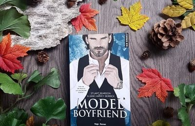 Invincible, tome 2 : Model Boyfriend - Jane Harvey-Berrick et Stuart Reardon