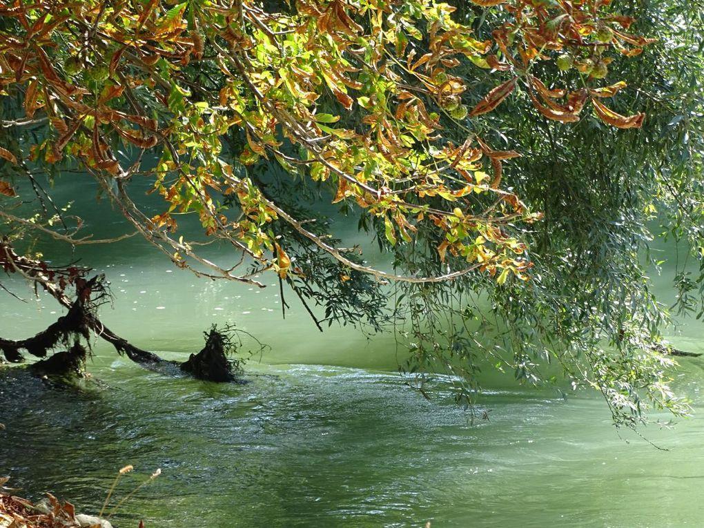 Promenade en bord de Marne à Chelles