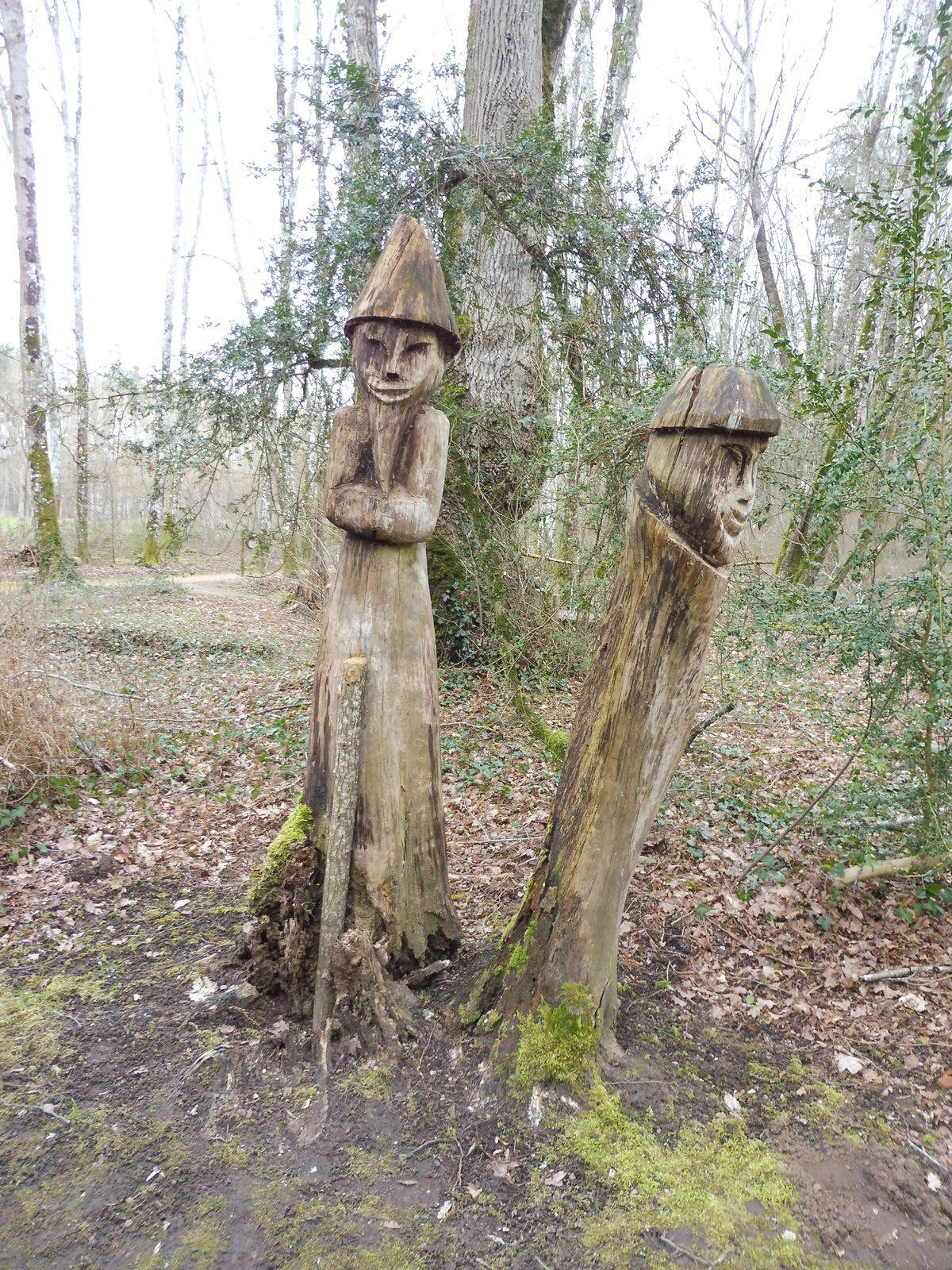 Forêt de Scévolles