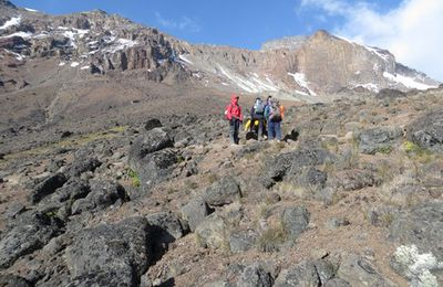 Reasons to Choose Kilimanjaro and Safari Tour Expedition