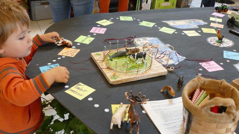 Mobile biodiversité et jeu  habitat participatif