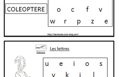 Associer lettres majuscules / scriptes la coccinelle mal lunée MS