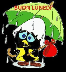 Buon  lunedì con la pioggia sole nel cuore però...