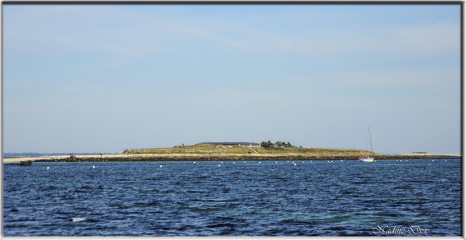 L'île de Penfret -  Archipel des Glénan