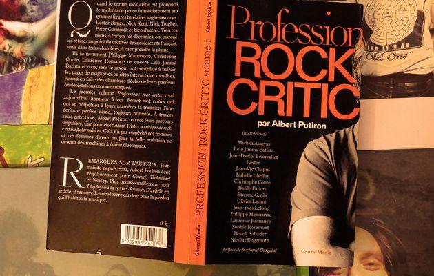 Profession rock critic, une histoire de la critique rock française par ses plumes