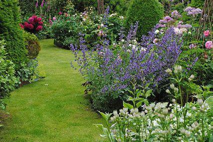 ♥ garden