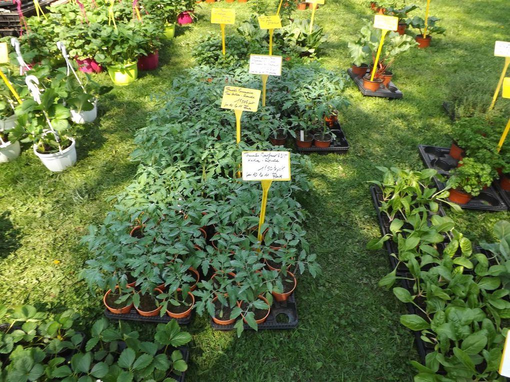 Fête des plantes, 10 éme édition