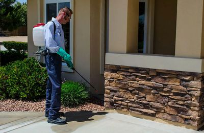 Pest Control Service: What Kinds Of Services Can You Get?