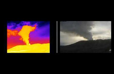 Activity of Nevado del Ruiz, Suwanosejima, Sabancaya and La Fournaise.