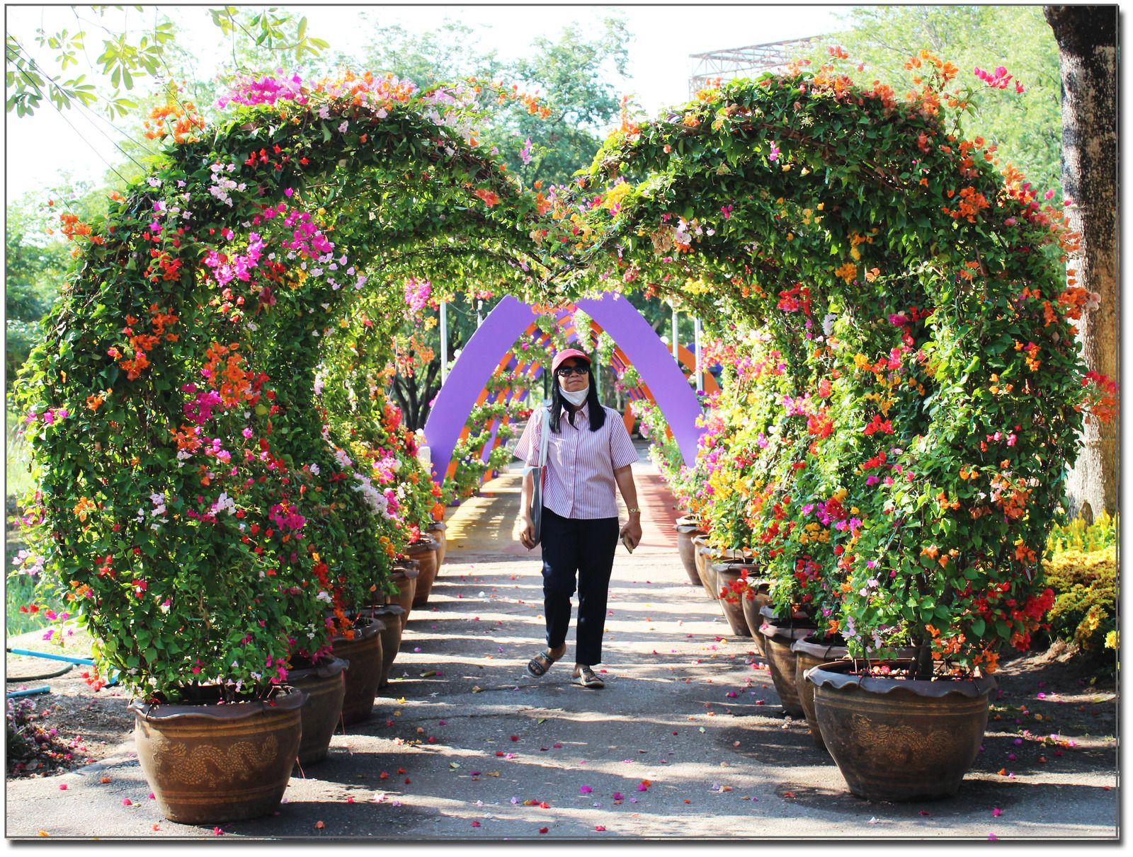 Floralies de Khon Kaen (Thaïlande)