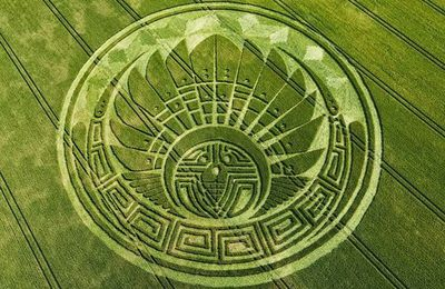 Video CROP CIRCLES : Science / Ressenti / Spiritualité / Messages